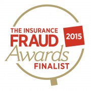 FRAUD INVESTIGATION TEAM OF THE YEAR - INDEPENDENT